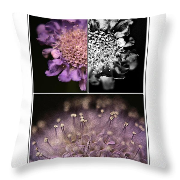 Floralicious  Throw Pillow by Bonnie Bruno