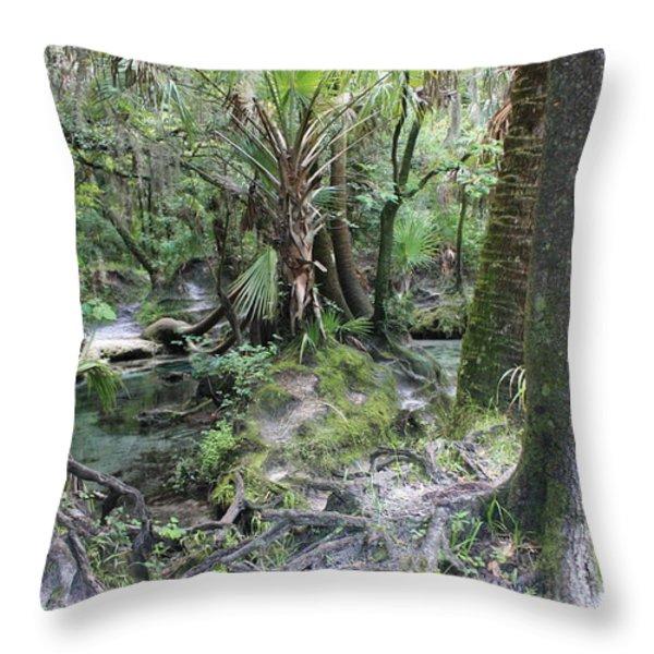 Florida Landscape - Lithia Springs Throw Pillow by Carol Groenen
