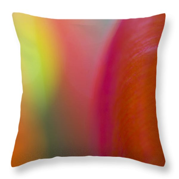 Flower Abstraction Throw Pillow by Silke Magino