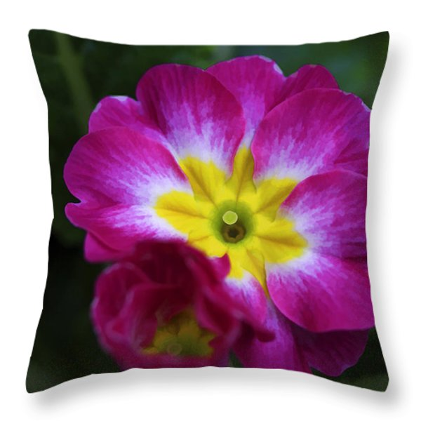 Flower In Spring Throw Pillow by Deborah Benoit
