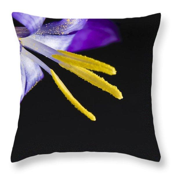Flower Throw Pillow by Svetlana Sewell