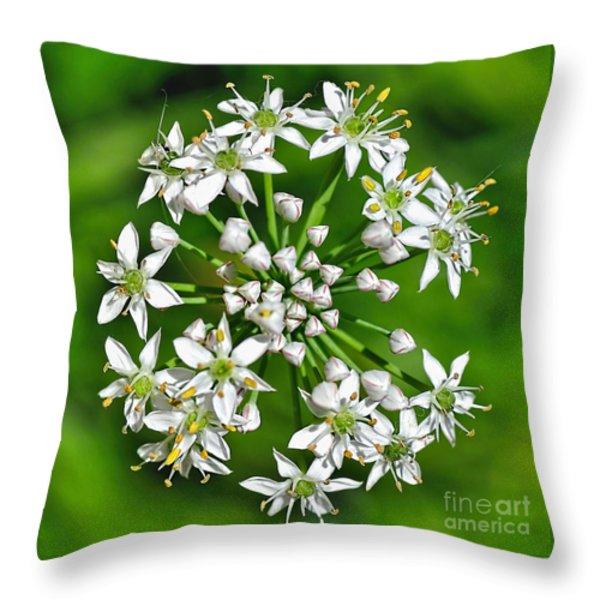 Flowering Garlic Chives Throw Pillow by Kaye Menner