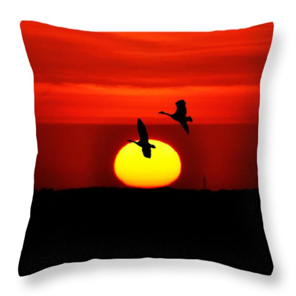 Flying North at Sunrise Throw Pillow by Bill Cannon