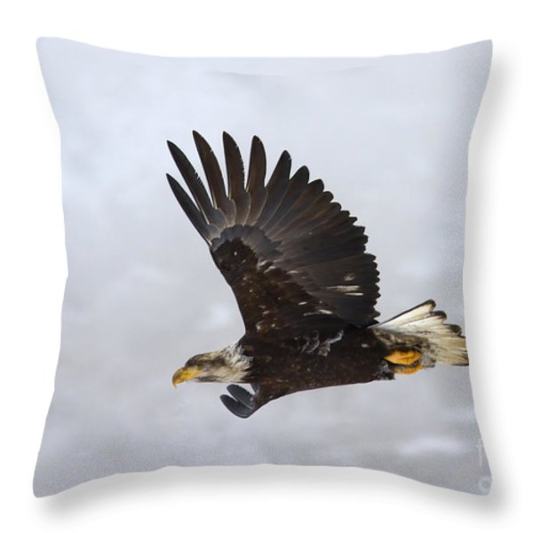 Foggy Flight Throw Pillow by Mike  Dawson