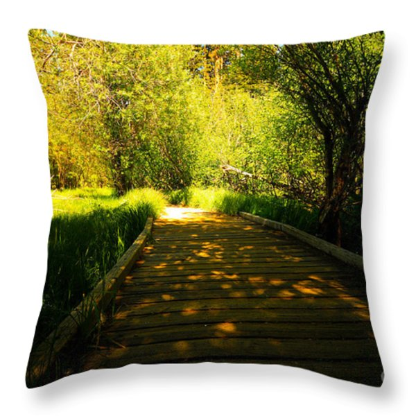 Follow The Path Throw Pillow by Cheryl Young
