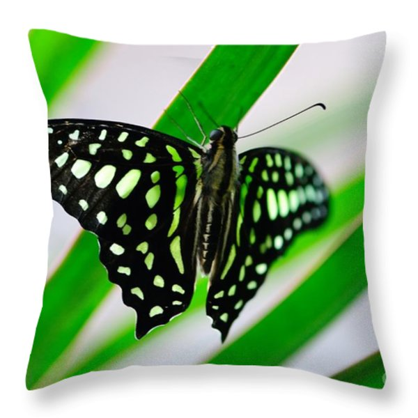 Forest Queen Throw Pillow by Charles Dobbs