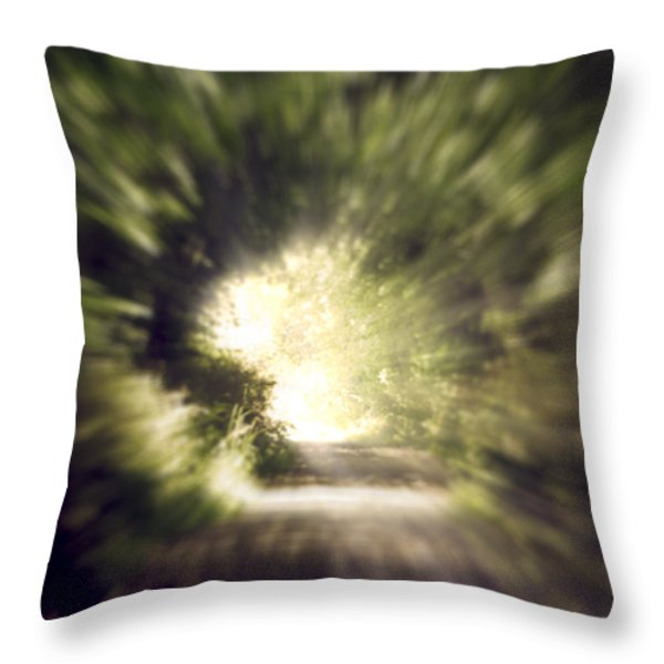 Forest Tunnel Throw Pillow by Wim Lanclus