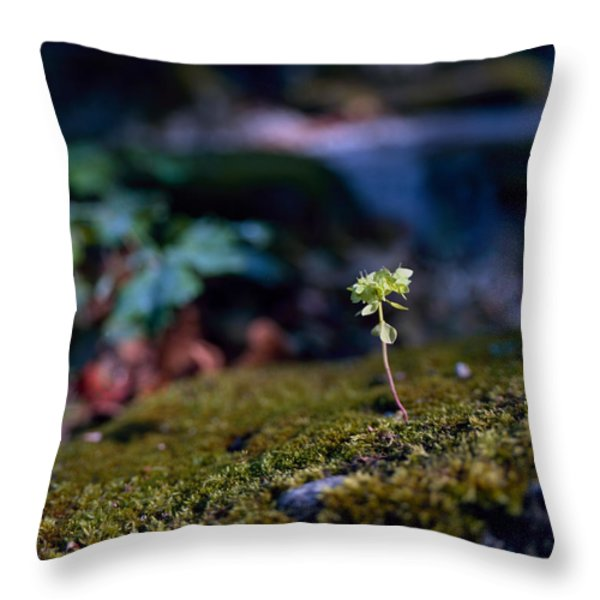 Forlorn Hope Throw Pillow by Marcio Faustino