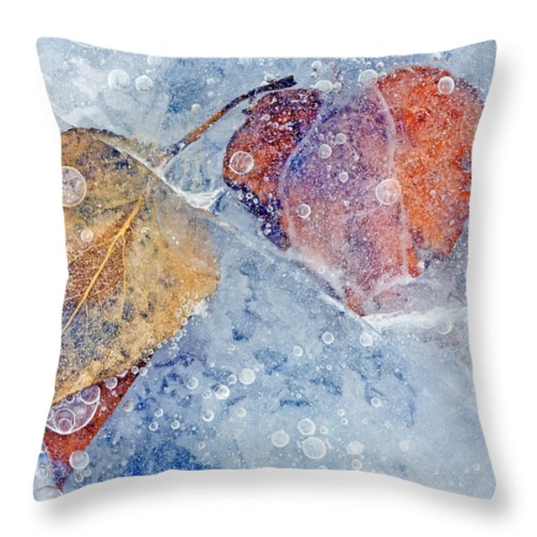 Fractured Seasons Throw Pillow by Mike  Dawson