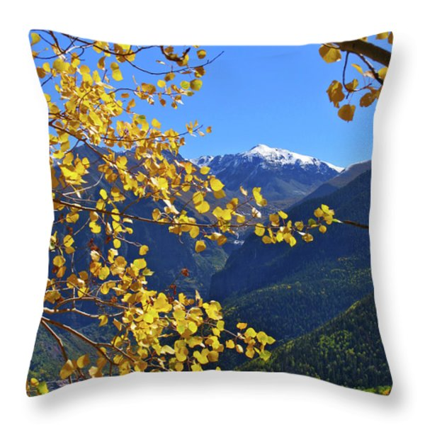 Framed By Fall Throw Pillow by Scott Mahon