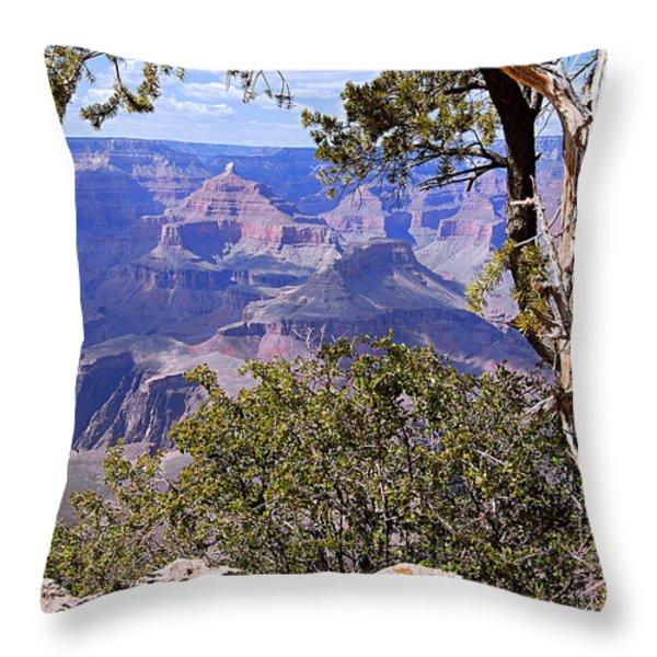 Framed View - Grand Canyon Throw Pillow by Larry Ricker