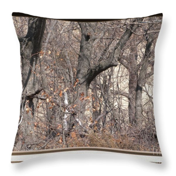 Framing Tangled Dunescape Throw Pillow by Ann Horn