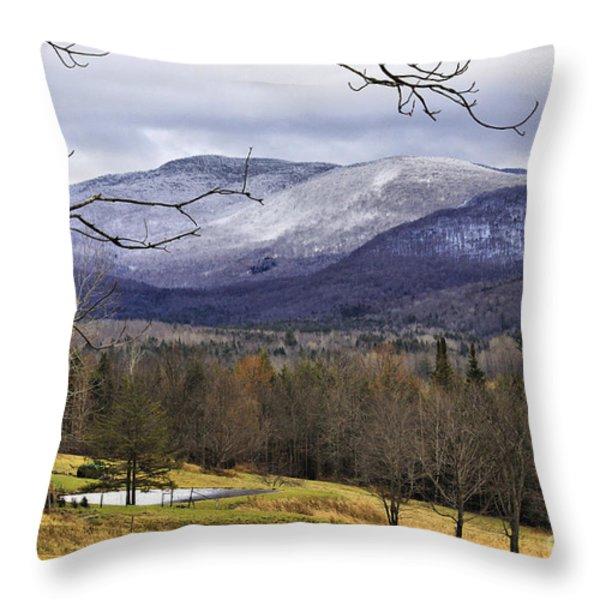 Fresh Snow Throw Pillow by Deborah Benoit