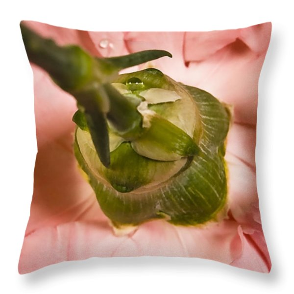 From... Throw Pillow by Svetlana Sewell