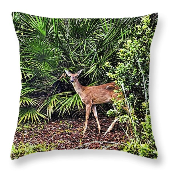 From The Palmetto Bushes Throw Pillow by Jan Amiss Photography