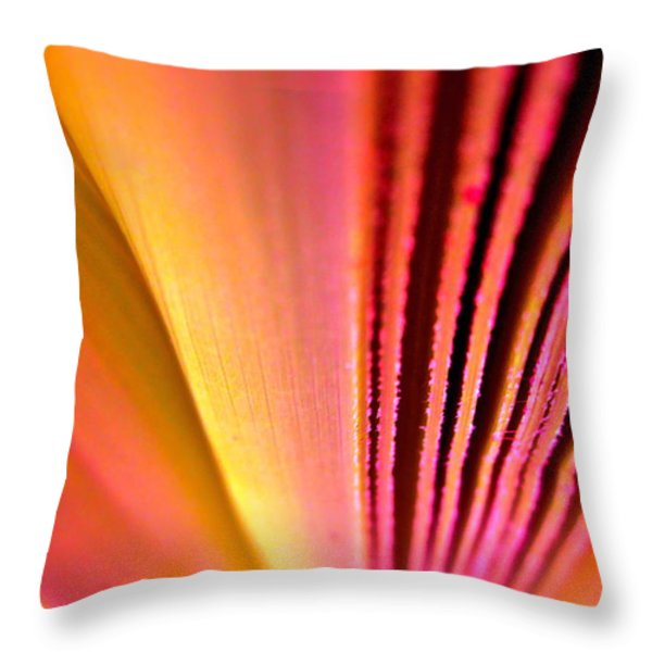 Fron Fan Unfolding Throw Pillow by Gwyn Newcombe