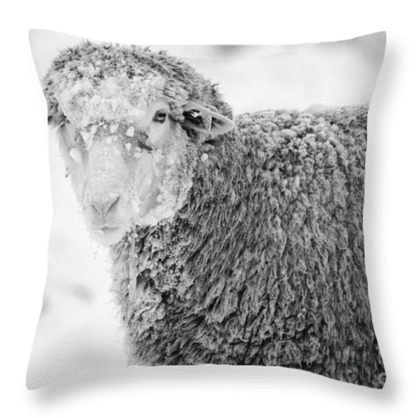 Frozen Dinner Throw Pillow by Mike  Dawson