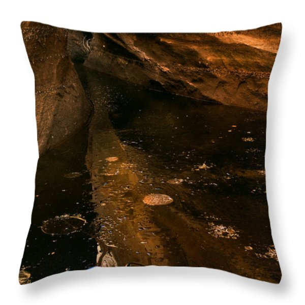 Frozen Slot Throw Pillow by Mike  Dawson