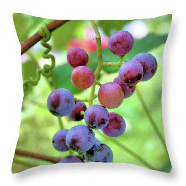 Fruit of the Vine Throw Pillow by Kristin Elmquist