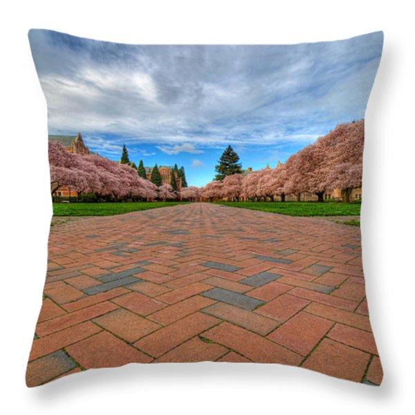 Full Bloom Throw Pillow by Dan Mihai
