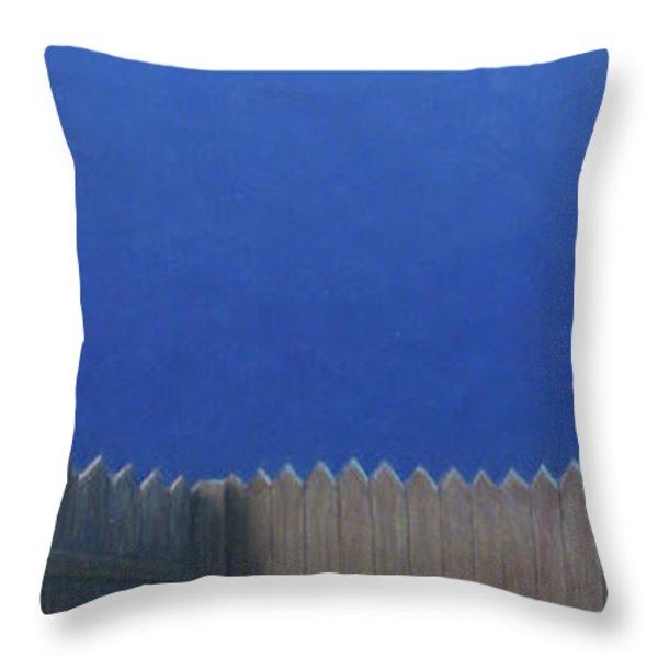 Full Moon Throw Pillow by James W Johnson