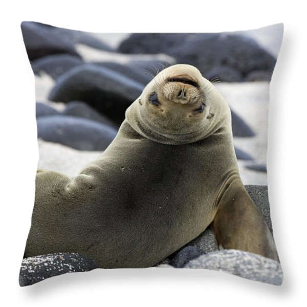 Galapagos Sea Lion Throw Pillow by David Hosking and Photo Researchers