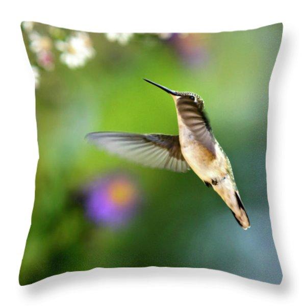 Garden Hummingbird Throw Pillow by Christina Rollo