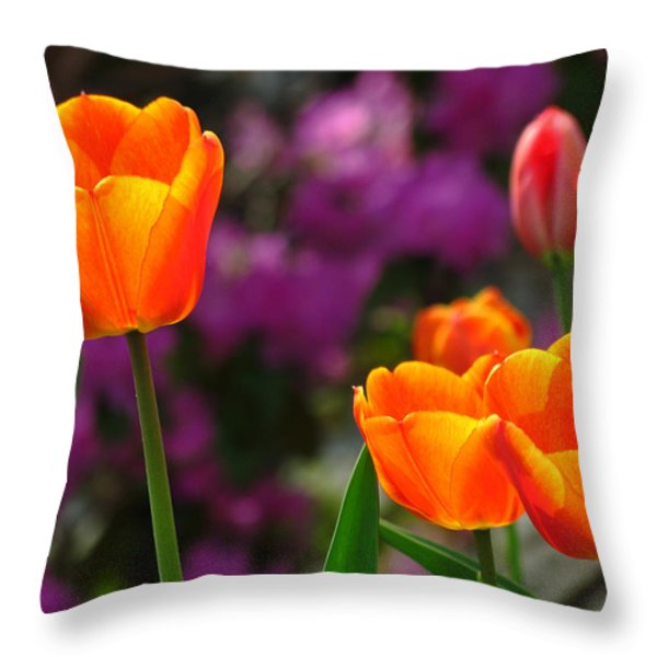 Garden Party Throw Pillow by Juergen Roth