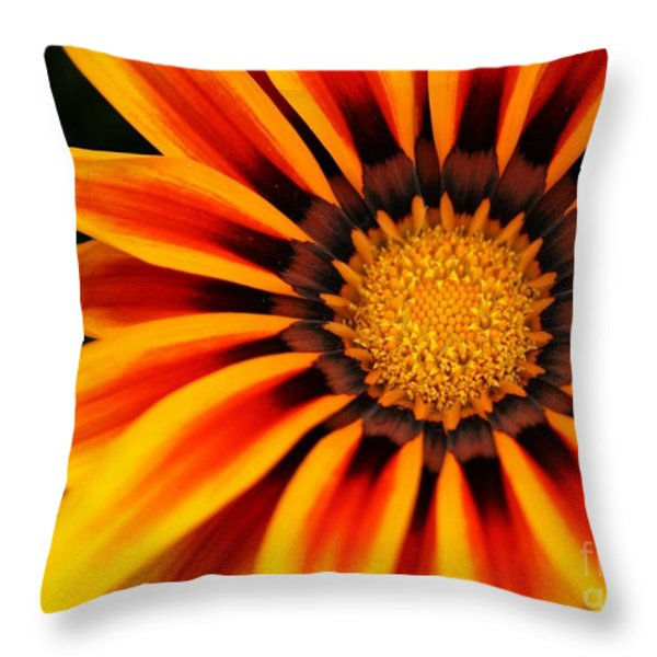 Gazania R Throw Pillow by Sabrina L Ryan
