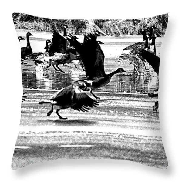 Geese on Ice Taking Flight Throw Pillow by Bill Cannon