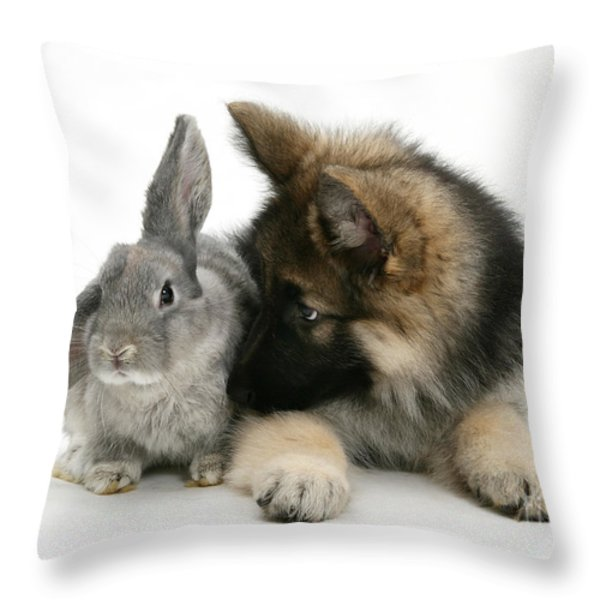 German Shepherd And Rabbit Throw Pillow by Mark Taylor