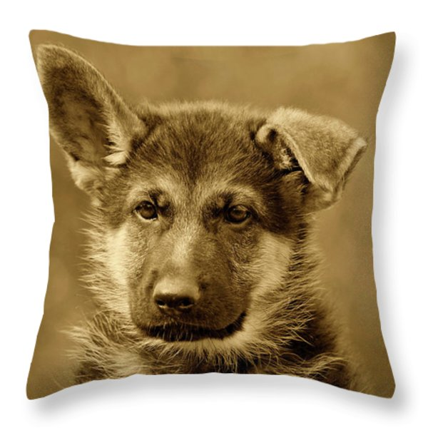 German Shepherd Puppy In Sepia Throw Pillow by Sandy Keeton