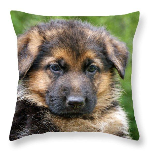 German Shepherd Puppy Throw Pillow by Sandy Keeton