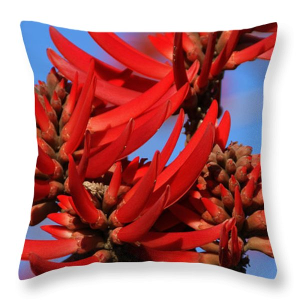 Gift Of Zimbabwe Throw Pillow by Linda Knorr Shafer