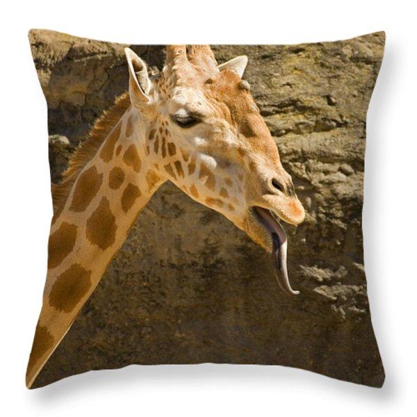 Giraffe Raspberry Throw Pillow by Mike  Dawson