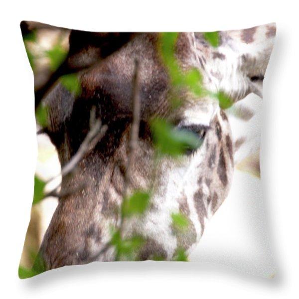 Giraffe Throw Pillow by Steven Natanson