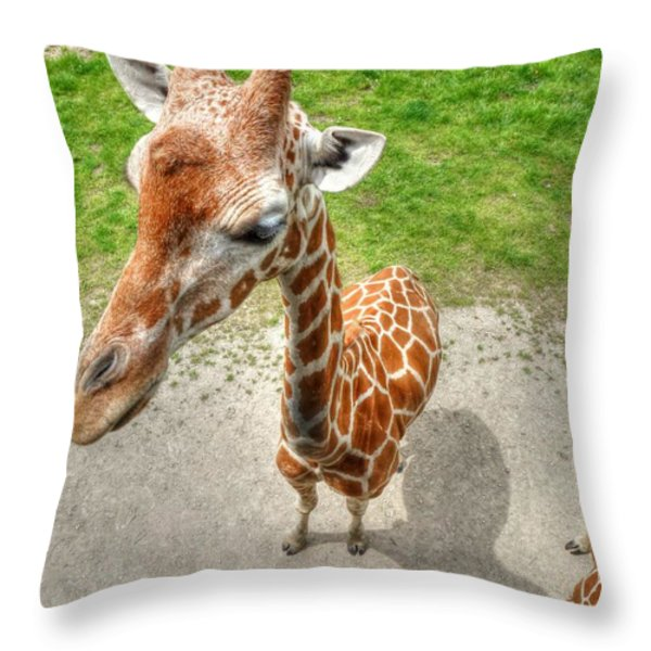 Giraffe's Point of View Throw Pillow by Michael Garyet