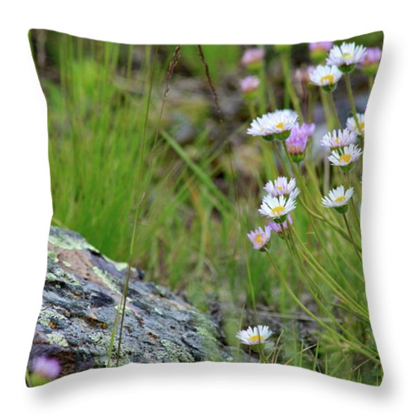 Glacial Daisies Throw Pillow by Karon Melillo DeVega