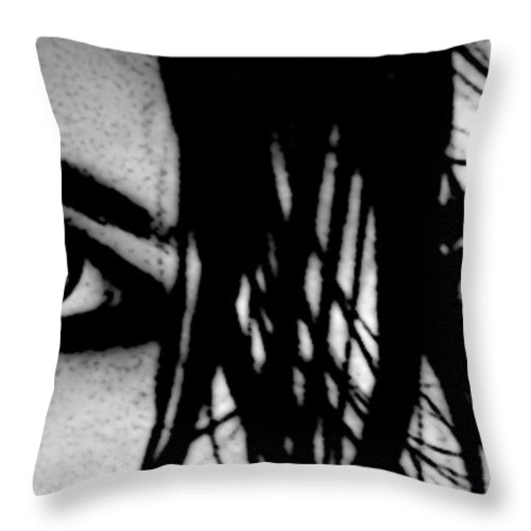 Glare Throw Pillow by Tbone Oliver