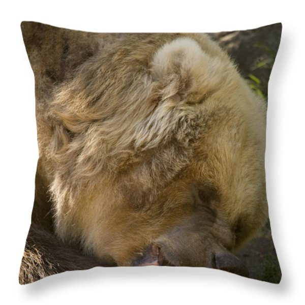 Gnaw Throw Pillow by Mike  Dawson