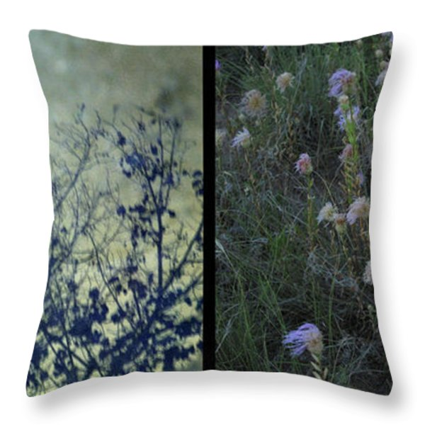 God Throw Pillow by James W Johnson