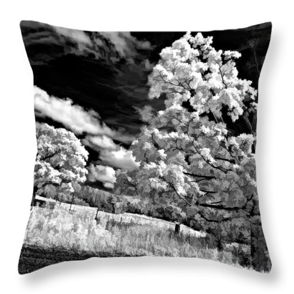 Goin' Down the Road buzzed Throw Pillow by Steve Harrington