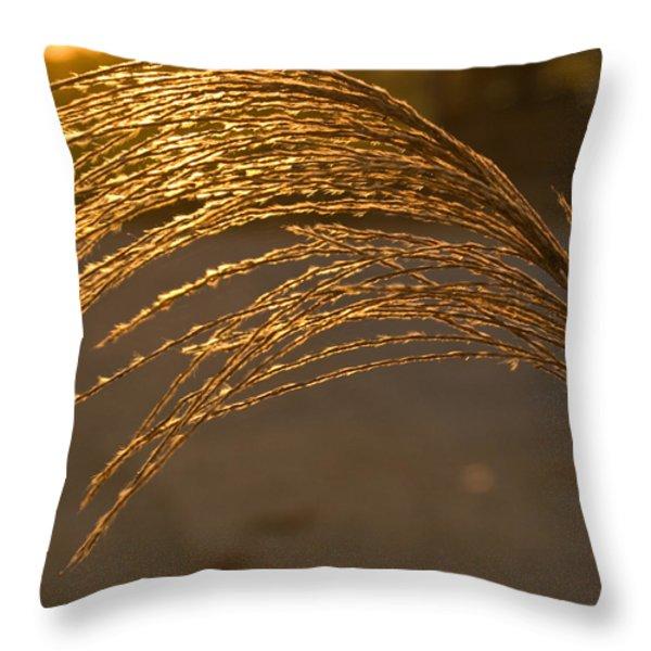 Golden Grass Throw Pillow by Douglas Barnett