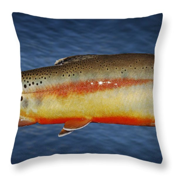 Golden Throw Pillow by Kelley King
