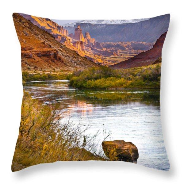 Golden Light Throw Pillow by Marilyn Hunt