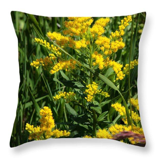 Golden October Throw Pillow by Christine Till
