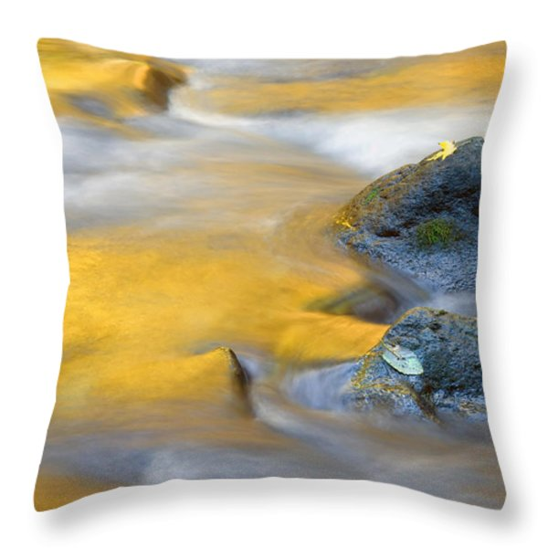 Golden Refuge Throw Pillow by Mike  Dawson