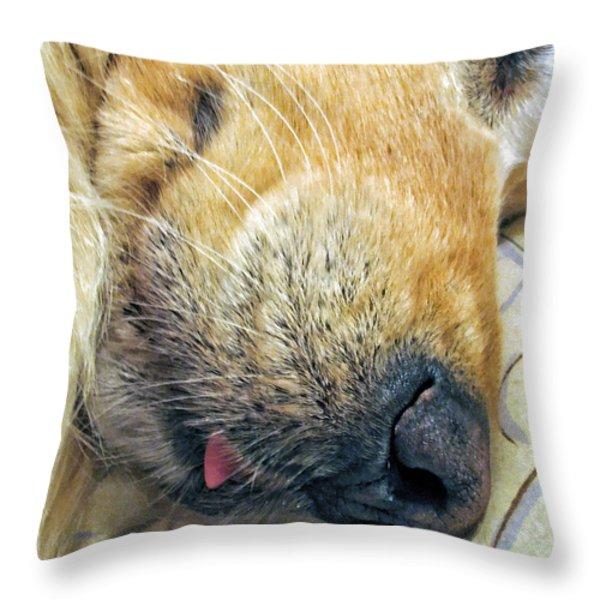 Golden Retriever Dog Little Tongue Throw Pillow by Jennie Marie Schell