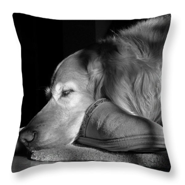 Golden Retriever Dog With Master's Slipper Black And White Throw Pillow by Jennie Marie Schell