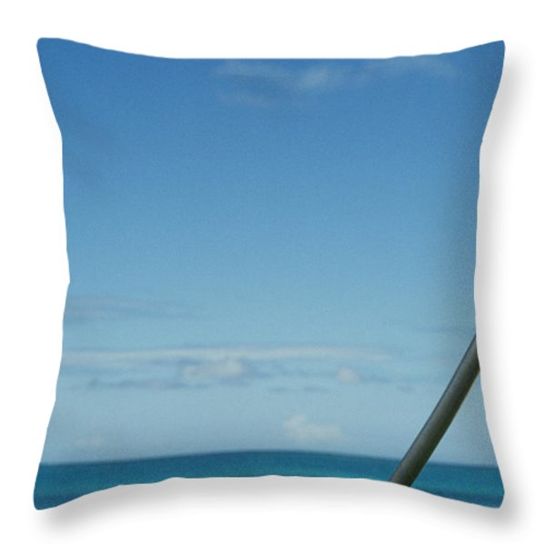 Golf Ball And Driver Throw Pillow by Sri Maiava Rusden - Printscapes